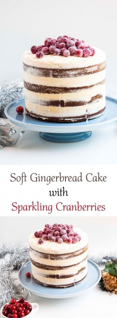Soft Gingerbread Cake with Sparkling Cranberries